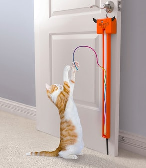 The Award Winning Cat String Toy