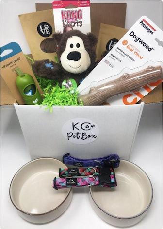 Dog adoption starter kit