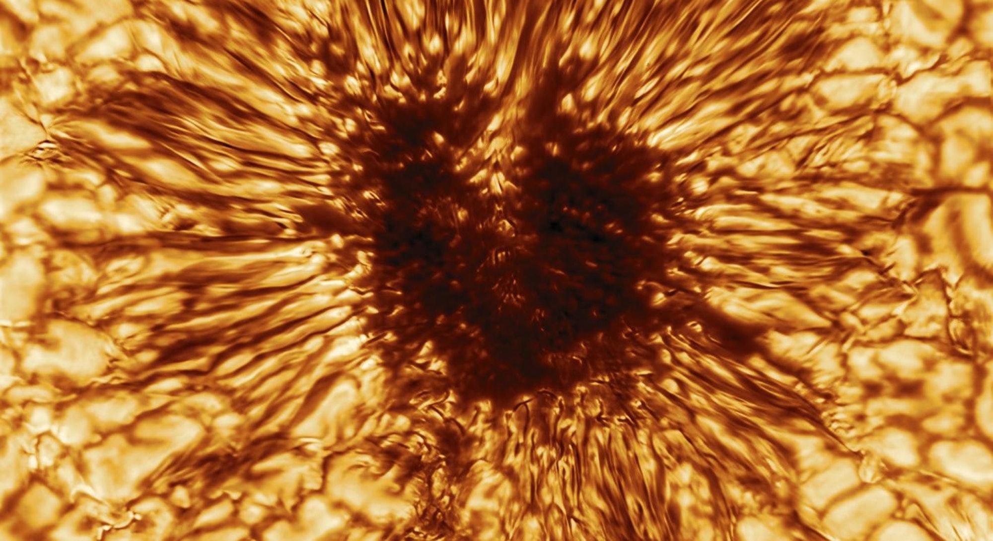 Detailed sunspot