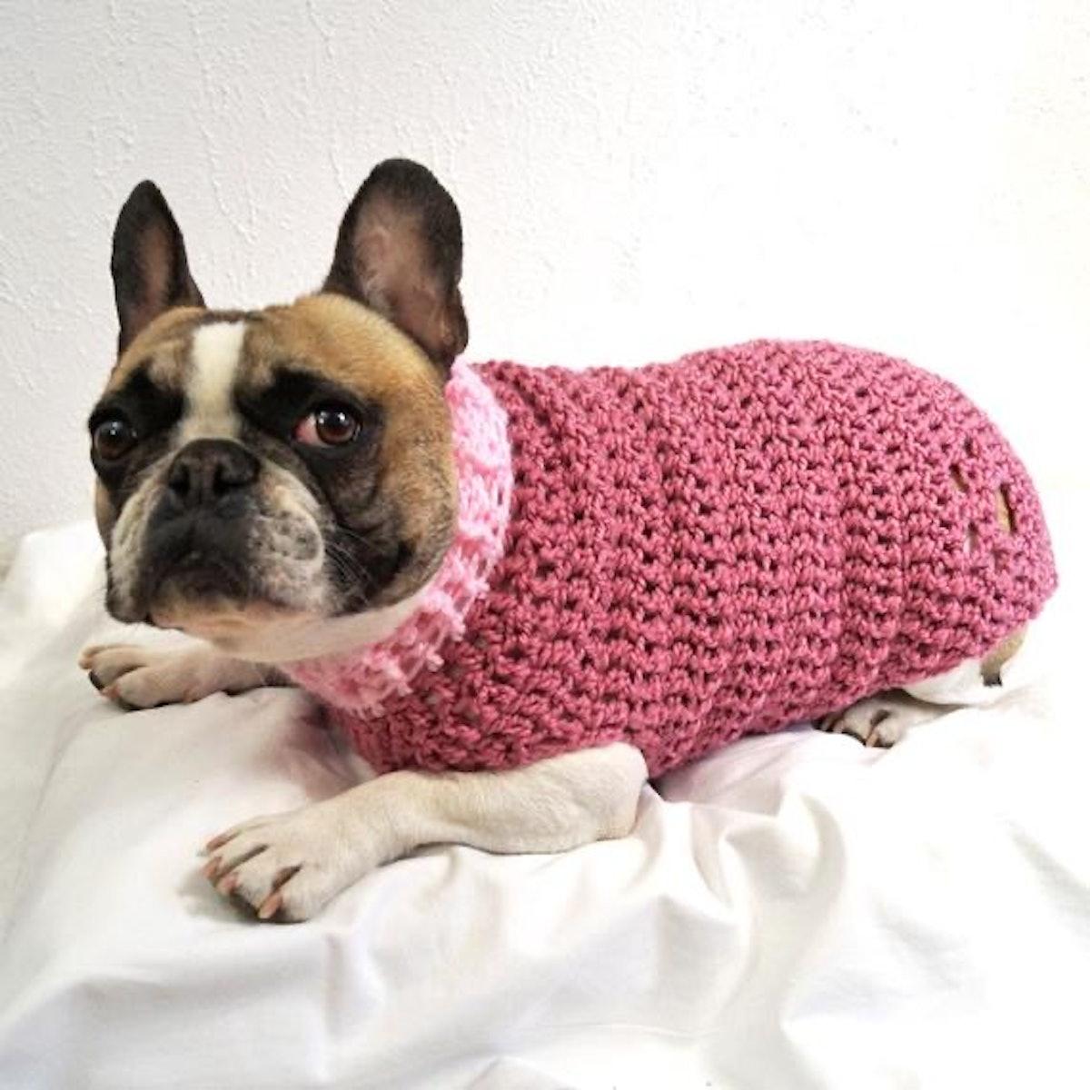 Crocheted Paw-Print Dog Jumper