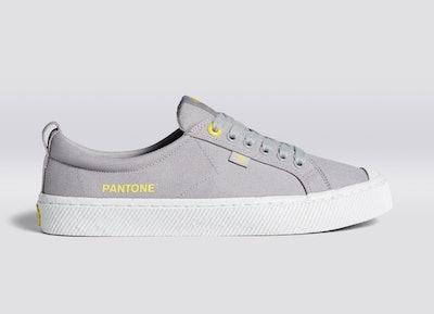 Pantone Ultimate Gray Canvas