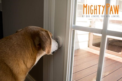 Mighty Paw Smart Bell 2.0