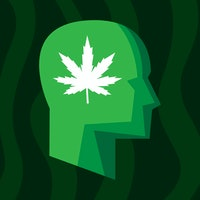 Vape study reveals troubling link between marijuana and false memories