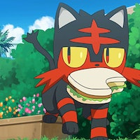 'Pokémon Sword and Shield': How to get Litten and other Dexit starters without Pokémon Home