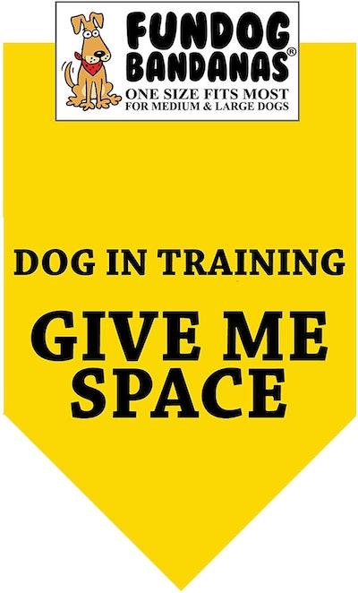 Give Me Space Dog Bandana