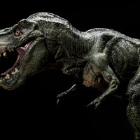 Dinosaurs: New study upends a belief many learned in elementary school