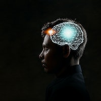 A.I. research has disrupted how we think about the human brain in one fundamental way