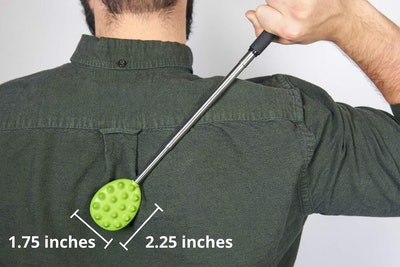 Cactus Scratcher Stick