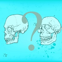 """""""Super-archaics:"""" Meet the humans who may have mated with your ancestors"""