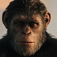 'Planet of the Apes 4' 2020 release date, trailer, cast, and more on the Disney sequel