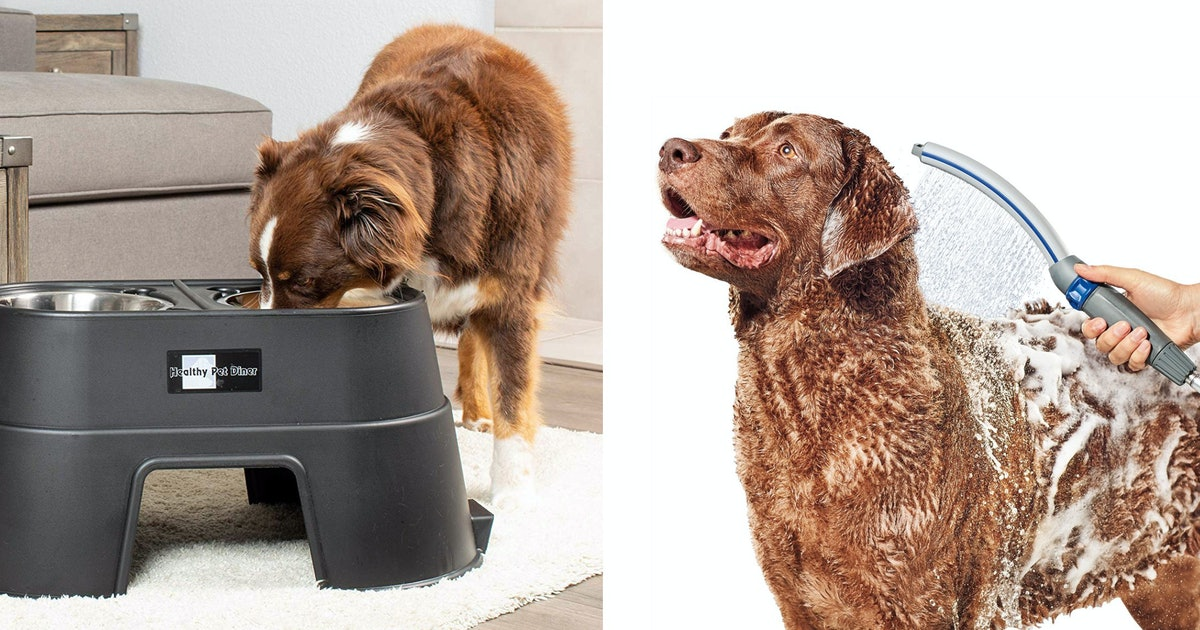 37 Genius Pet Products That Must Have Been Invented By A Dog Whisperer