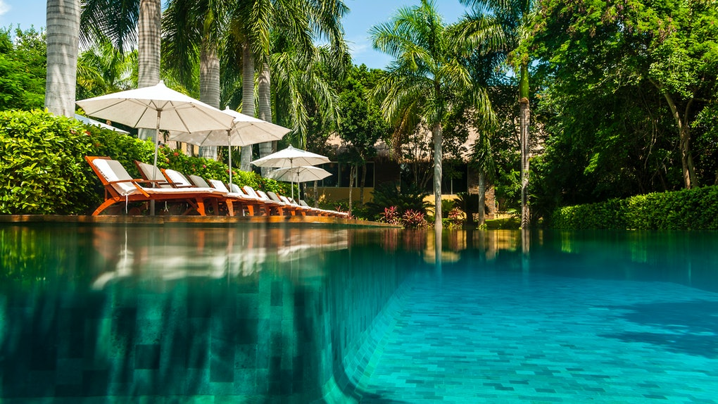 The pool at Grand Velas Riviera Maya features white lounge chairs with umbrellas and is surrounded by lush greenery.