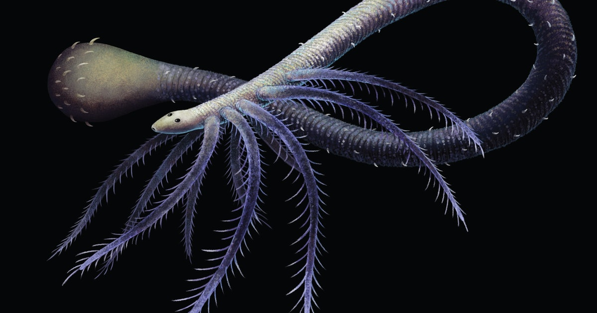 A twist of fate saved humans from sharing Earth with terrifying, limbed worms