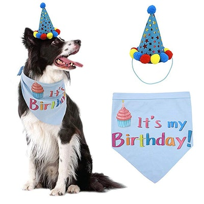 PUPTECK Dog Birthday Bandana