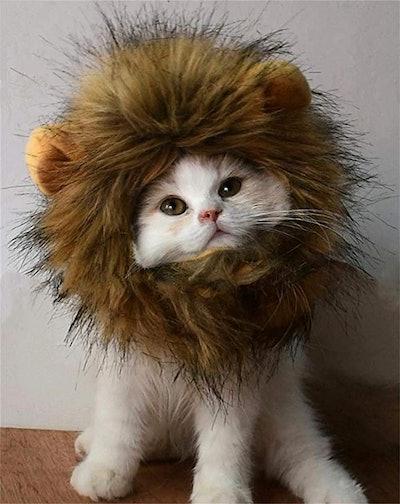 RosyLife Lion Mane Wig