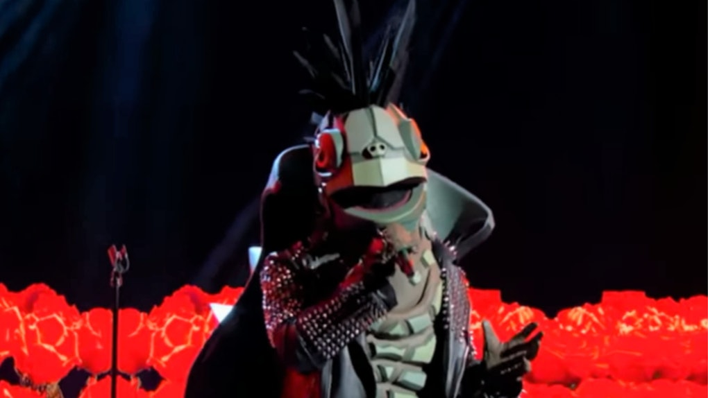 A picture of the Turtle on FOX's 'The Masked Singer.'