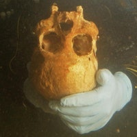 9,990-year-old skull may rewrite ancient American history
