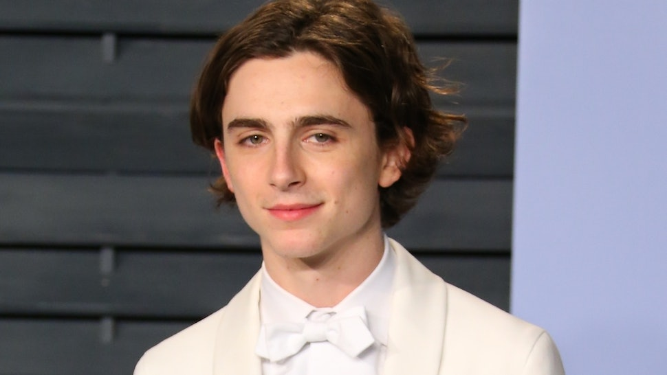 Is Timothée Chalamet Going To The 2020 Oscars? 'Little Women' Scored 6 Noms
