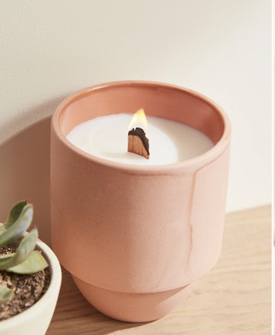 Parks Candle: Cactus Flower & Fern