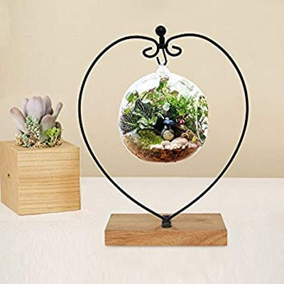 Awesomes Air Plant Stand