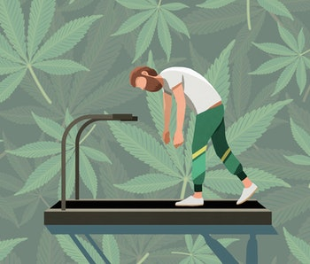exercise, weed, thc