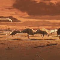 """Paleontologists unearth a """"real Jurassic Park"""" in Scotland"""
