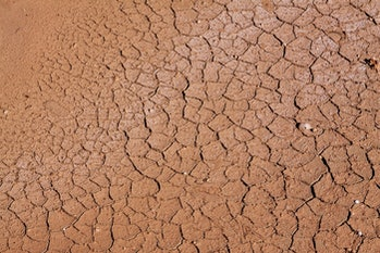 Dry cracked soil