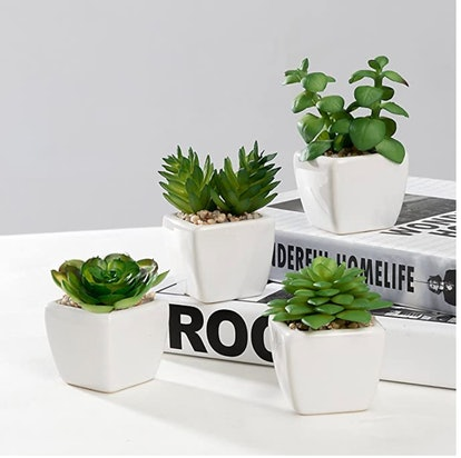 Nattol Small Artificial Succulent Plants Potted in White Ceramic Pots (Set of 4)