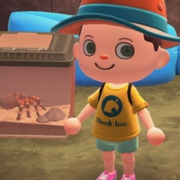 'Animal Crossing: New Horizons' tarantula: How to catch them and earn bells