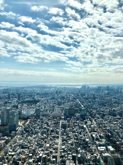 The top of the SkyTree tower in Tokyo, Japan overlooks buildings below on a sunny day.