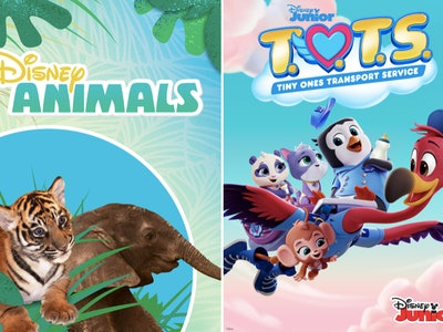 Starting on Wednesday, April 1, Disney Junior will be live streaming episodes of 'T.O.T.S.' and 'Disney Animals' on YouTube.