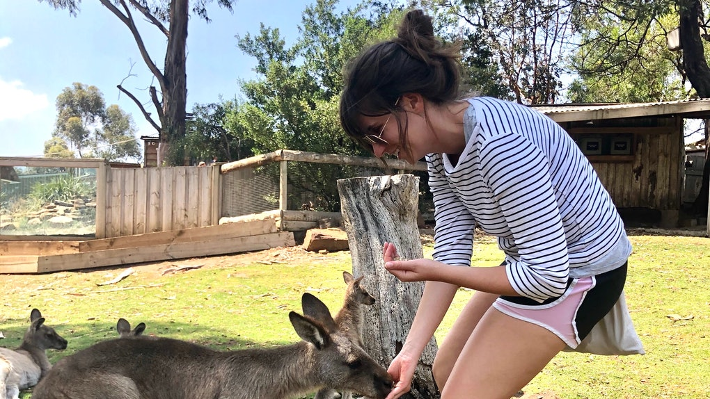 A woman smiles and bends down to feed a kangaroo.