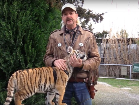 Where Is It Legal To Own Tigers? 'Tiger King' Sheds Light On Realities