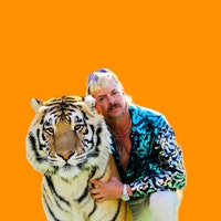 Was Joe Exotic right? Can a person actually tame a tiger?