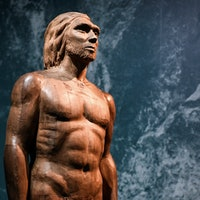 Inverse Daily: Neanderthal grub