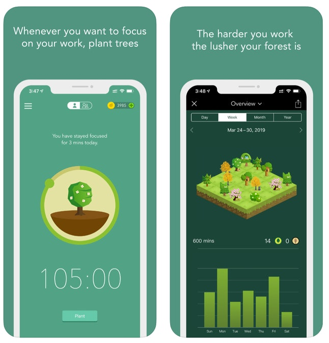This app helps you to practice your ability to focus while working from home.