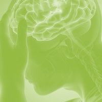 """Stress """"restructures"""" the brain by stopping production of a crucial protein -- mice study"""