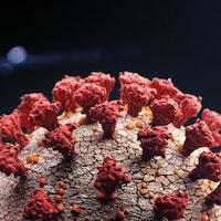 Is diarrhea a Covid-19 symptom? Coronavirus' reach may extend beyond the lungs