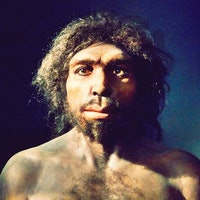 800,000-year-old tooth presents a new chapter of human history