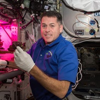 To prepare for life in space, astronauts are starting to grow their own food