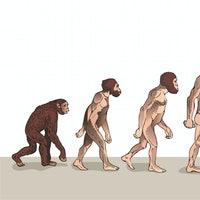 "The ""March of Progress"" evolution illustration is even better when you see what it gets wrong."