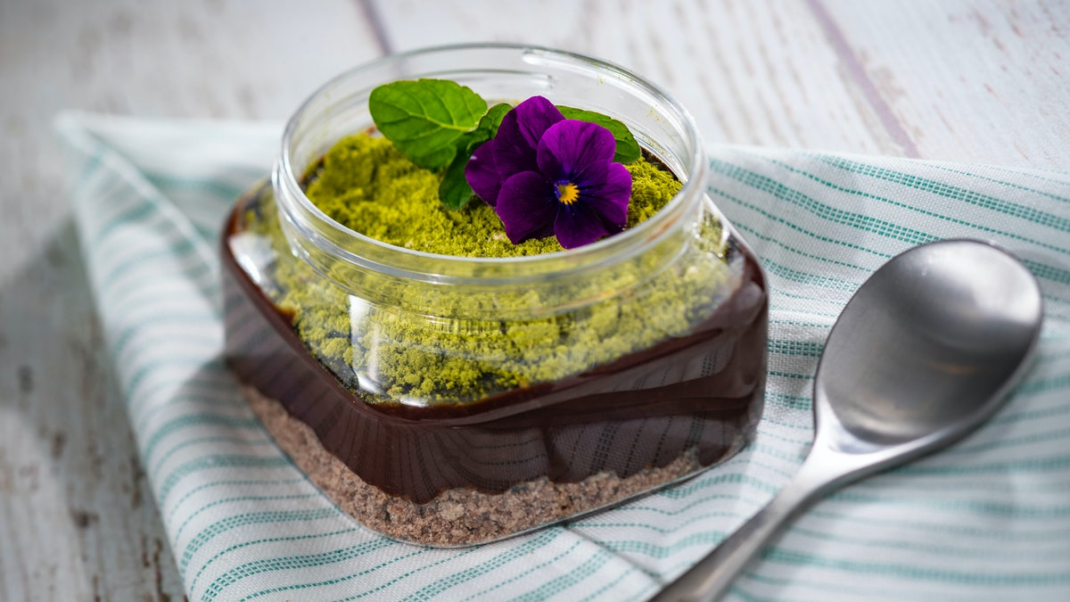 A chocolate pudding with a green topping and flowers sits on a table at the 2020 Epcot International Flower & Garden Festival at Disney.