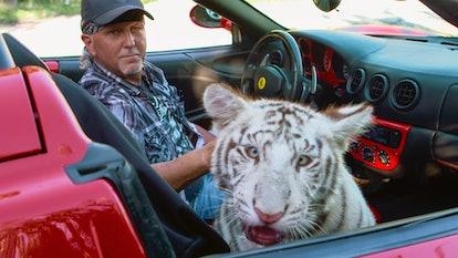 Rick Kirkham says Joe Exotic is terrified of big cats