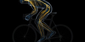 """Study: One type of exercise """"reverses"""" aging's effect on stem cells"""
