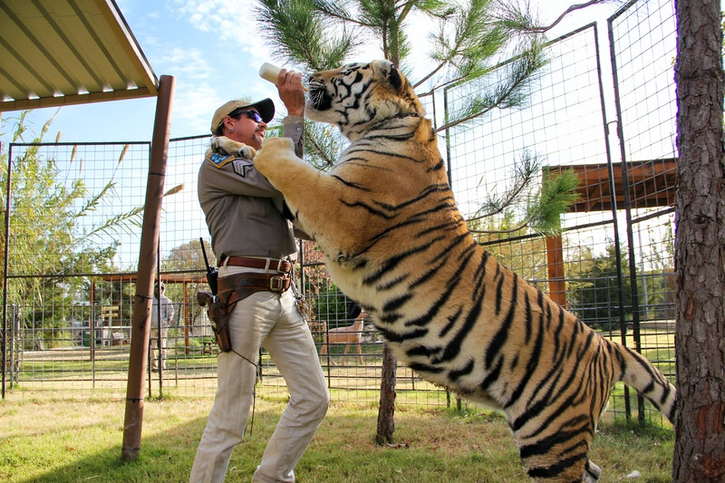 Joe Exotic is currently serving 22 years in jail.