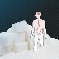 """Study explains why humans have an """"unquenchable desire"""" for sugar"""