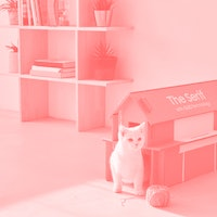 Samsung's new TV packaging turns into a cute cardboard cat house