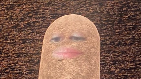 A zoom filter made a woman look like a potato