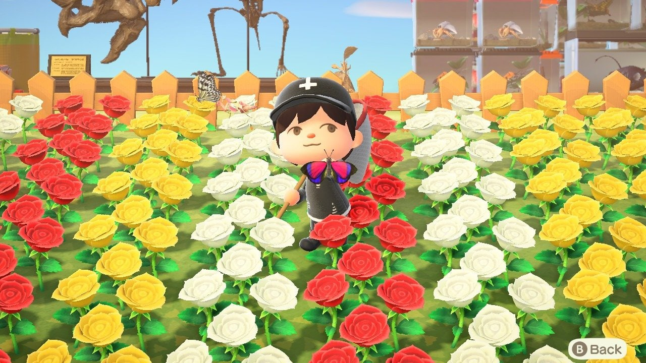 Animal Crossing Hybrid Flowers How To Cross Breed New Types And