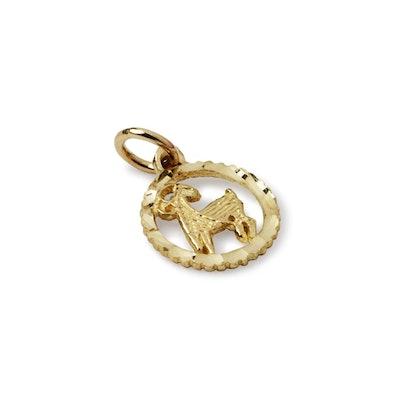 Suetables Shirley Horoscope necklace